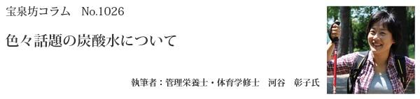 河谷彰子タイトル26