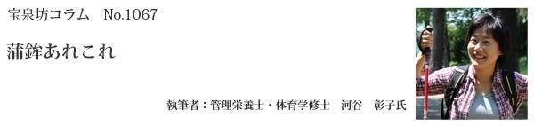 河谷彰子タイトル67