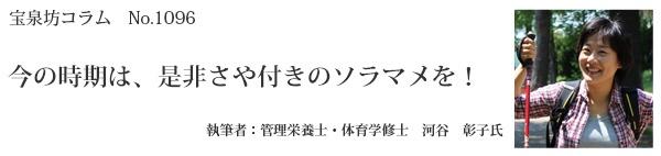 河谷彰子タイトル96